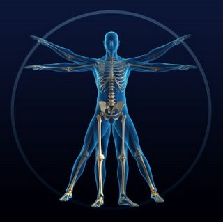 external image facts-about-the-human-body.jpg